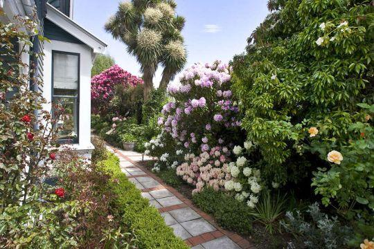 Neuseeland Reise, Christchurch, Orari Bed & Breakfast, Garten